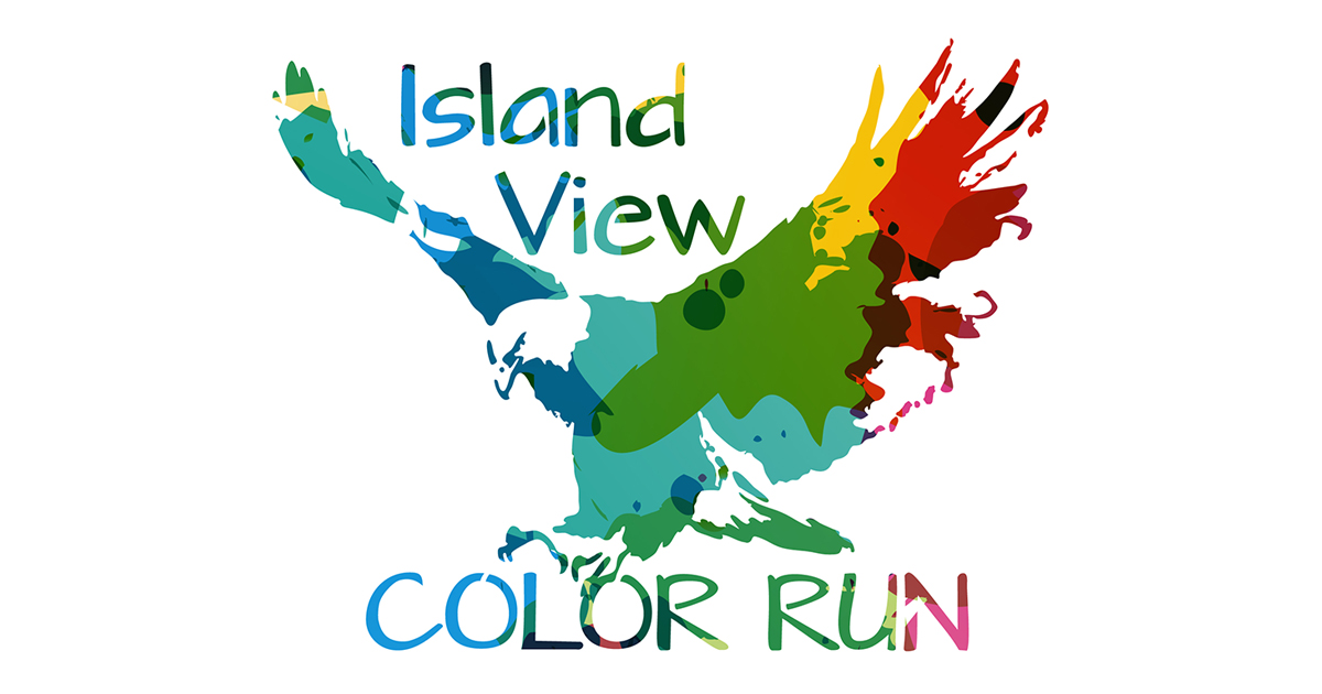 Image for Color Run Fundraiser